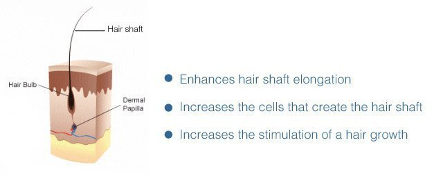 Change diet to help prevent hair loss